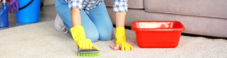 Carpet cleaning with carpet shampoo
